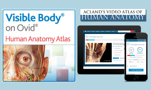 Graphic of Internal Head features (i.e. skull, nerves, veins) for Human Anatomy Atlas. Screen of Acland's video atlas website on a tablet and phone.