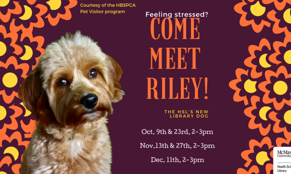 Feeling stressed? Come meet Riley!