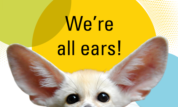 A photo of a white fennec fox and the caption We're all ears!